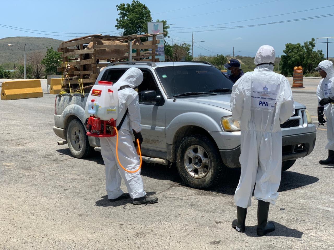 Gobierno refuerza desinfección en regiones del país para control peste porcina