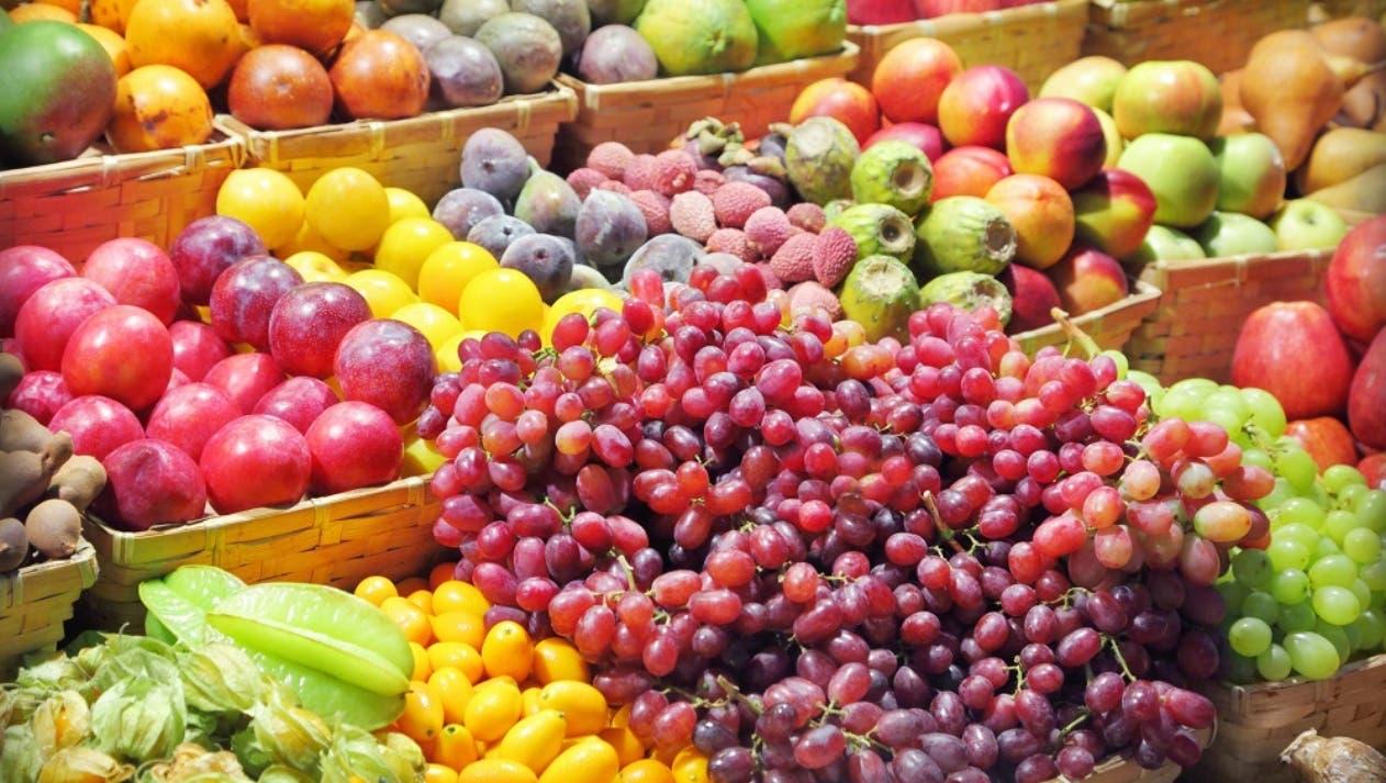 Diversas frutas tropicales  podrían entrar a EE.UU