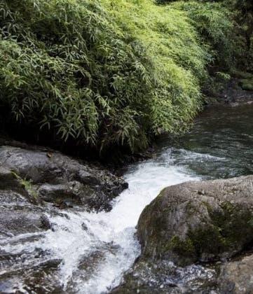 Plan rescate Valle Nuevo será detallado