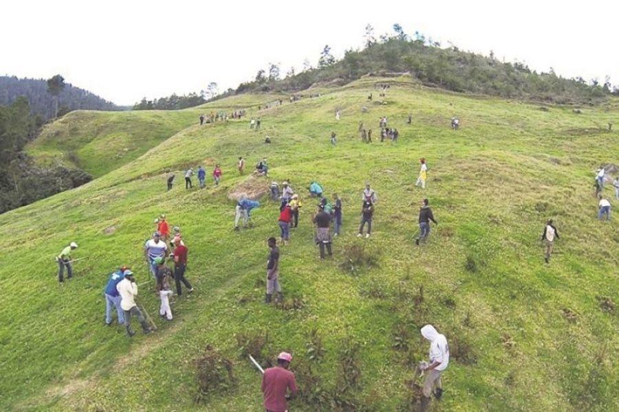 Medio Ambiente anuncia medidas en Valle Nuevo para su Rescate