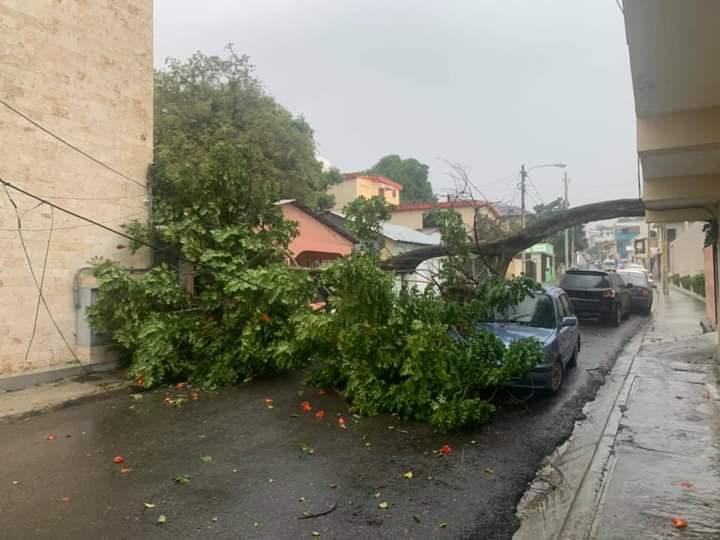 Lluvias con fuertes ráfagas de vientos y tormentas eléctricas derriban árboles y letreros en Puerto Plata