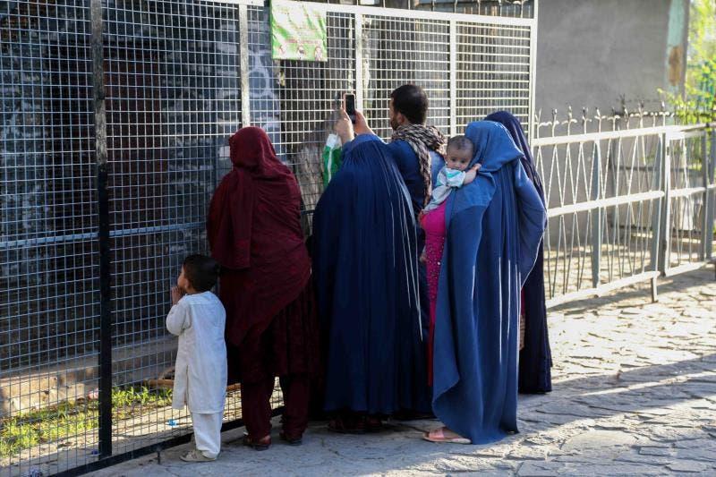 Talibanes disuelven el Ministerio de la Mujer y crean la cartera de la Virtud