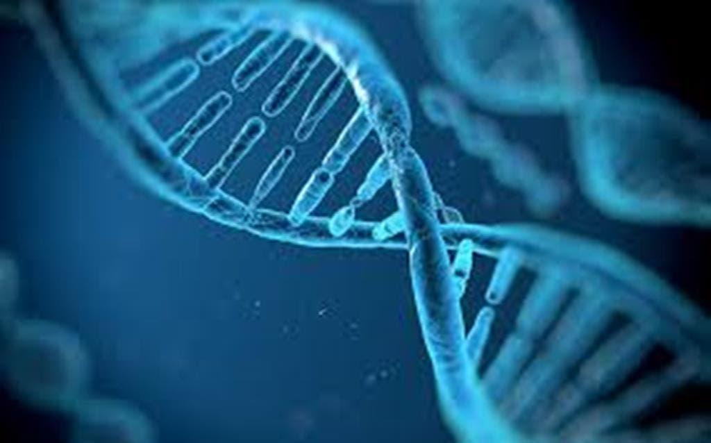 ¿Clasificar enfermedades por órganos o síntomas? Las proteínas van más allá