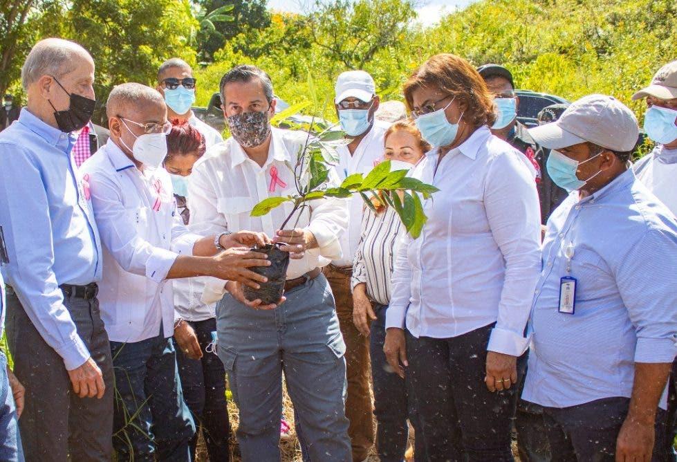 Medio Ambiente y la UTEPDA plantan más de 8 mil árboles en Pedernales